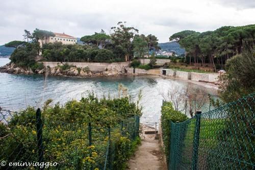 isola d'Elba, cala delle alghe