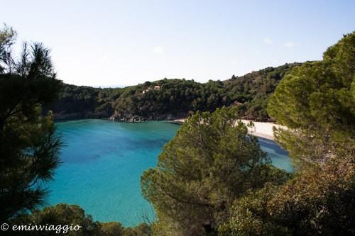 isola d'Elba Fetovaia
