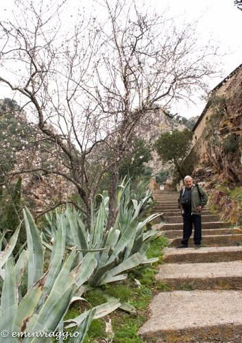 isola d'Elba salita al Santuario di Monserrato