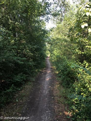 pedalando sulla vecchia ferrovia tunnel nel verde