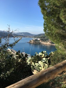 Isola d'Elba, un incanto anche d'inverno