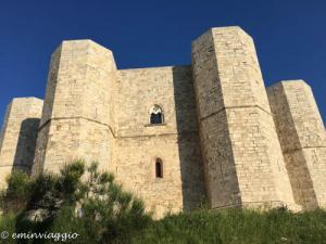 Castel del Monte, misteri, in nome della rosa
